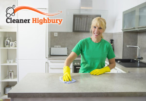 Professional Cleaning Services HIghbury