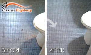 bathroom-cleaning-Highbury