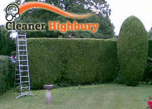 Hedge Maintenance Highbury